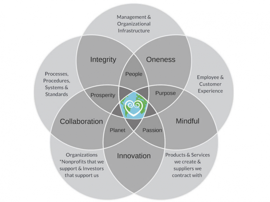KnoWEwell core values diagram